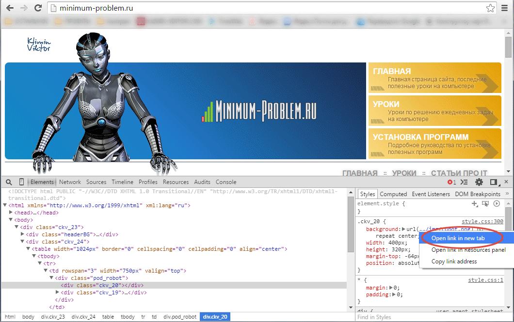 Кнопка открытия картинки в новом окне Google Chrome
